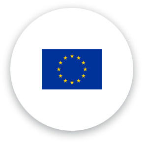 Icon Flag Euro Interflex